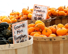 How to Shop Your Farmers Market