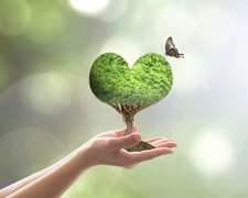 10 Easy Ways to Live a More Eco-Friendly Life